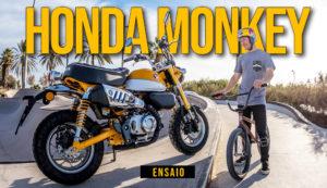 Ensaio Honda Monkey 2019 – Quando as coisas boas vêm em embalagens pequenas thumbnail