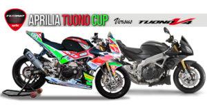 Aprilia Tuono CUP versus Aprilia Tuono V4 1100 RR thumbnail